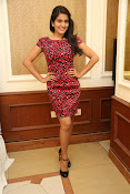 Vishaka singh at rowdy fellow event-thumbnail-11