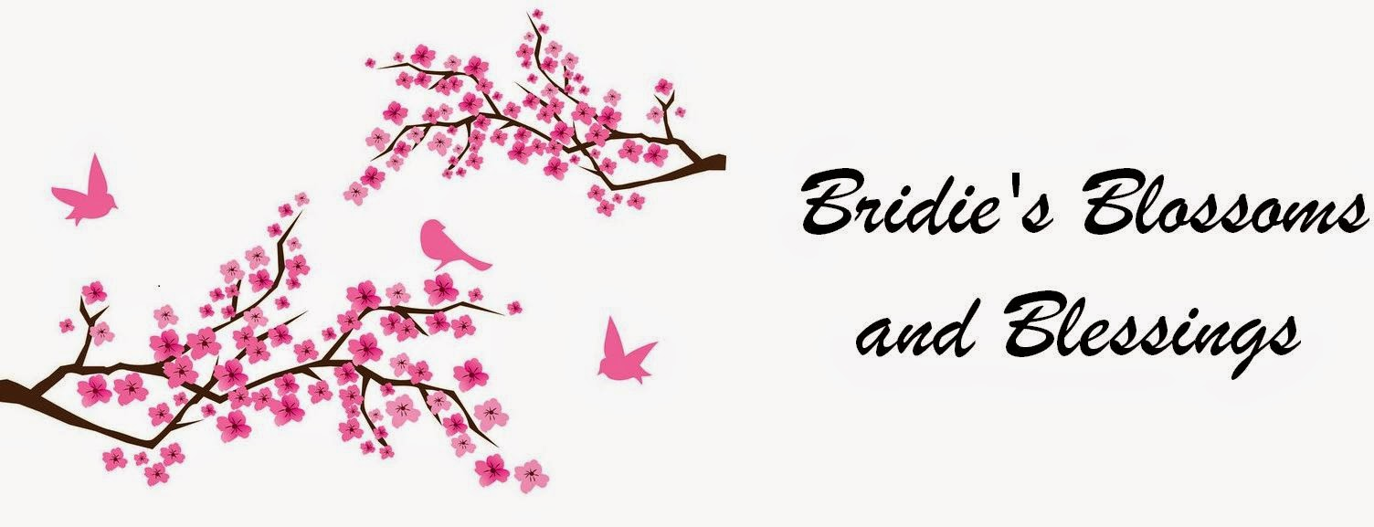 Bridie's Blossoms and Blessings Blog