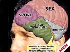 """Inilah Isi dalam Otak dan Pikiran  """"PRIA"""""""