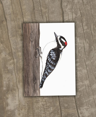 https://www.etsy.com/listing/157478997/downy-woodpecker-print-woodpecker-giclee?ref=favs_view_1