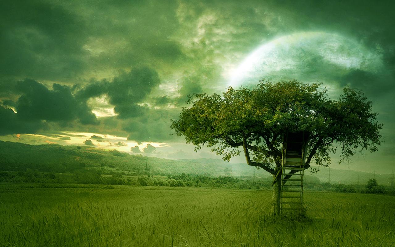 Free Nature Desktop