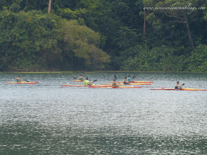 kayaking and canoeing at MacRitchie Reservoir park