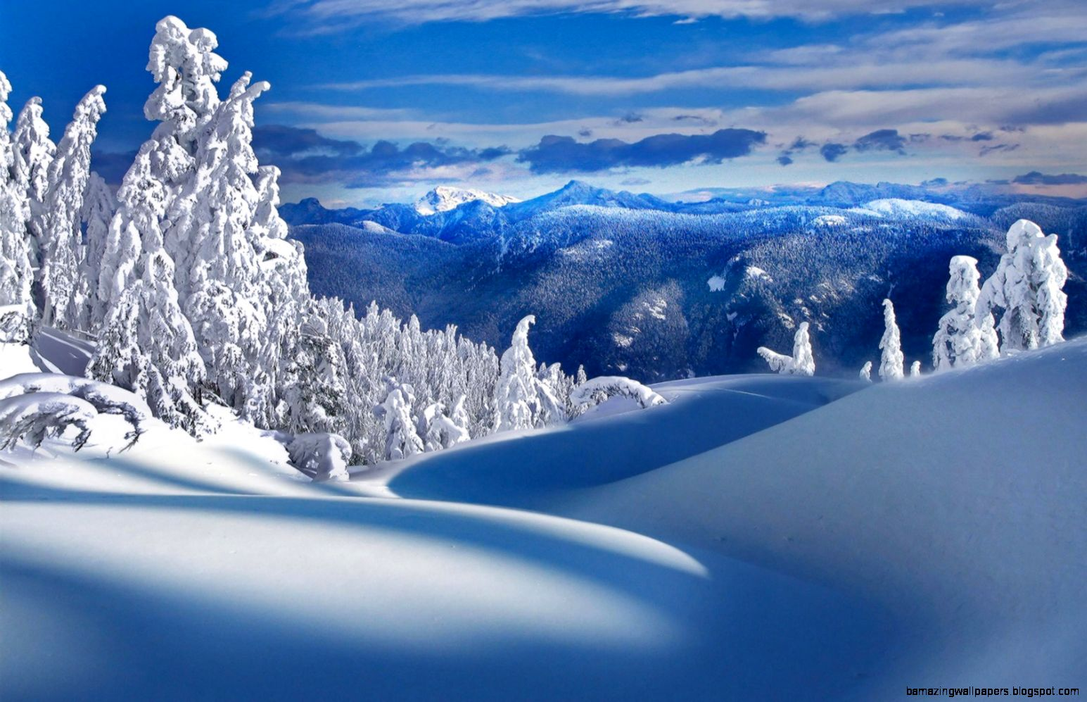 Beautiful Winter Landscape widescreen wallpaper