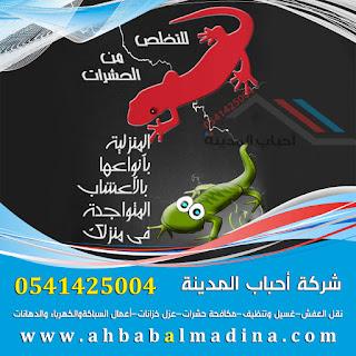 شركة ابادة حشرات بالمدينه المنوره  0541425004
