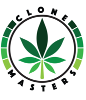 Clone Masters - Los Angeles Marijuana Clones for sale