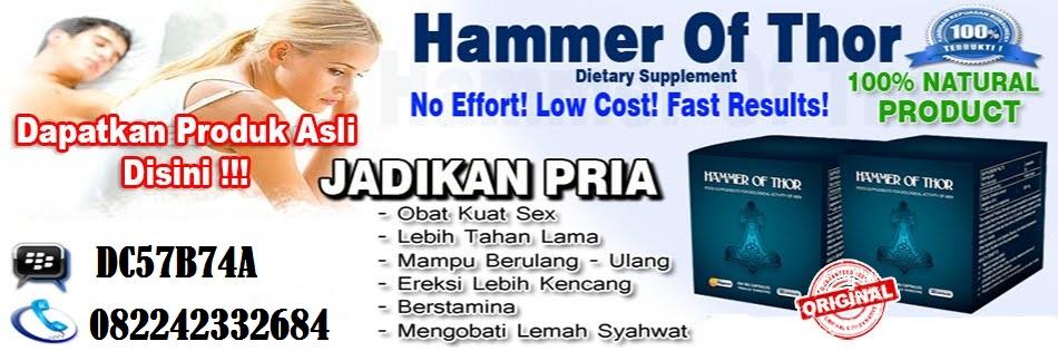 obat hammer of thor makassar