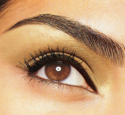 how to regrow your eyebrows