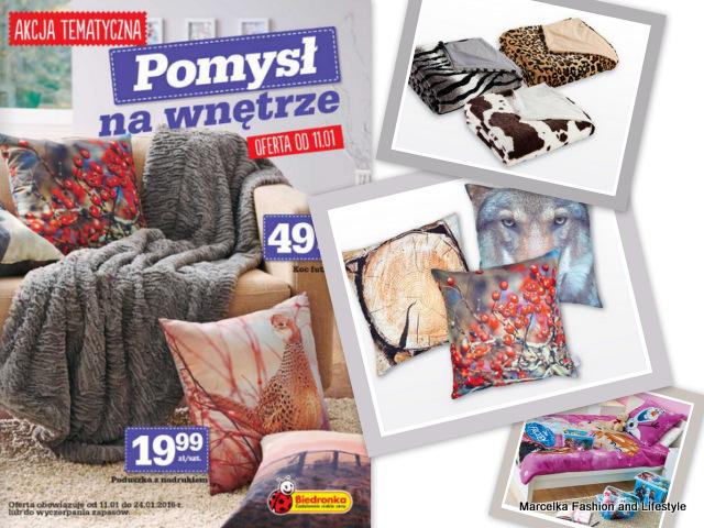 https://biedronka.okazjum.pl/gazetka/gazetka-promocyjna-biedronka-11-01-2016,18055/1/