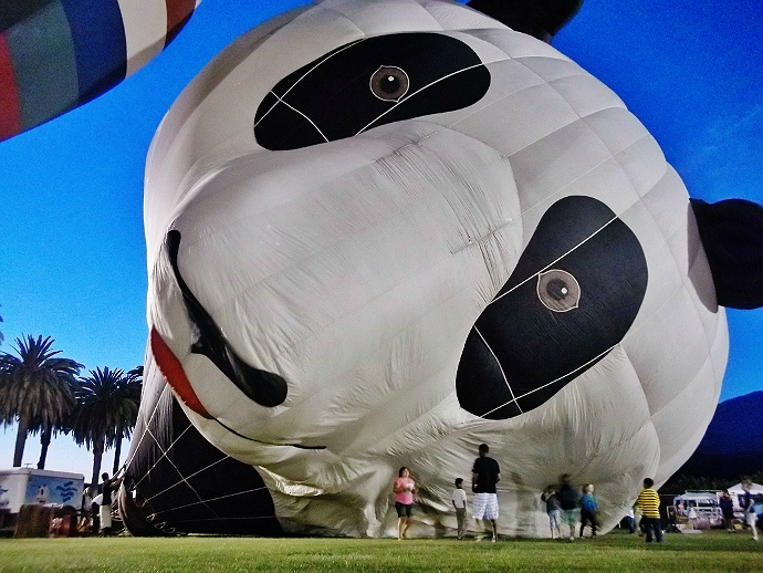 panda hot air balloon