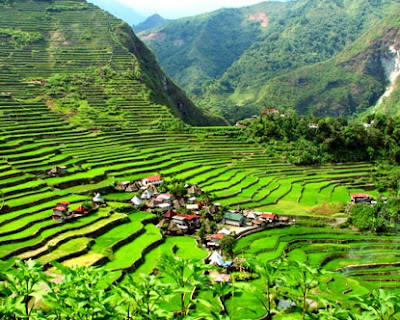 Banaue Rice Terraces In Phillipines