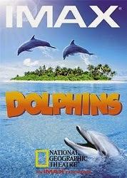 Loài Cá Heo - Dolphins