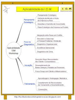 Aplicabilidade IDM Estratégia, Inovação e Diagnóstico