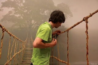 rope bridge mist