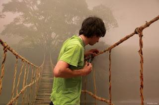 rope bridge mist