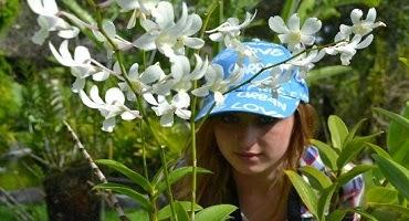 Bali Orchid Garden tour