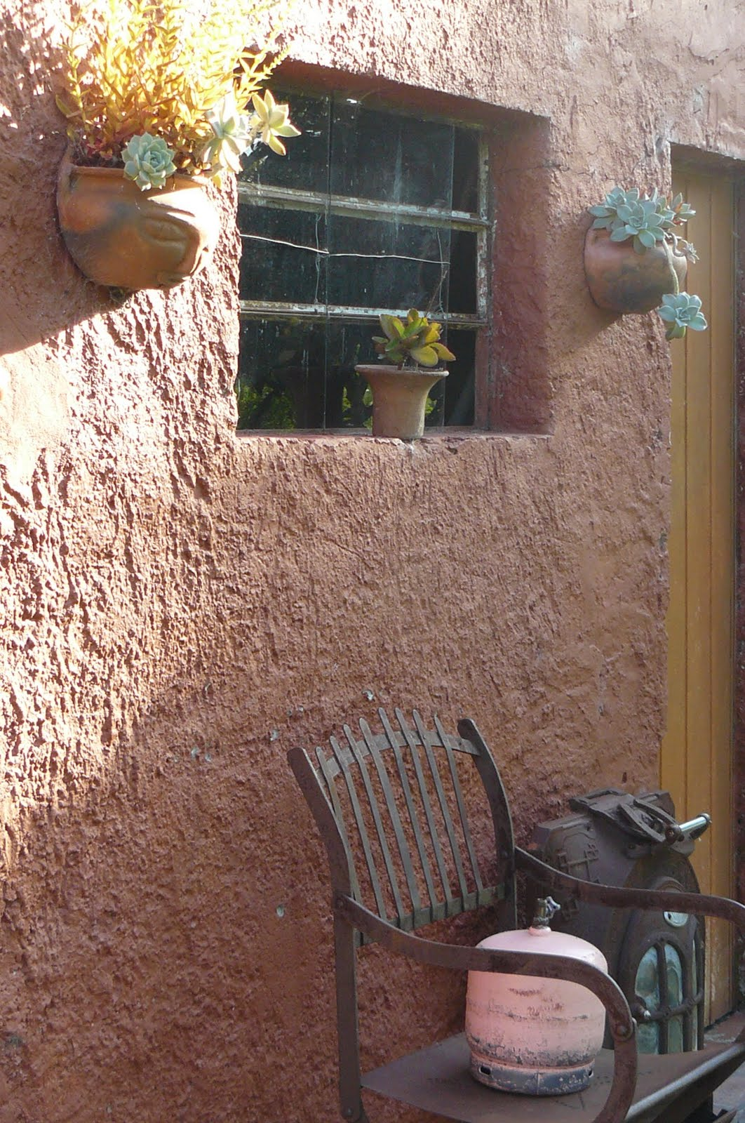 Jardines de cactus y suculentas macetas en la pared for Jardines con cactus