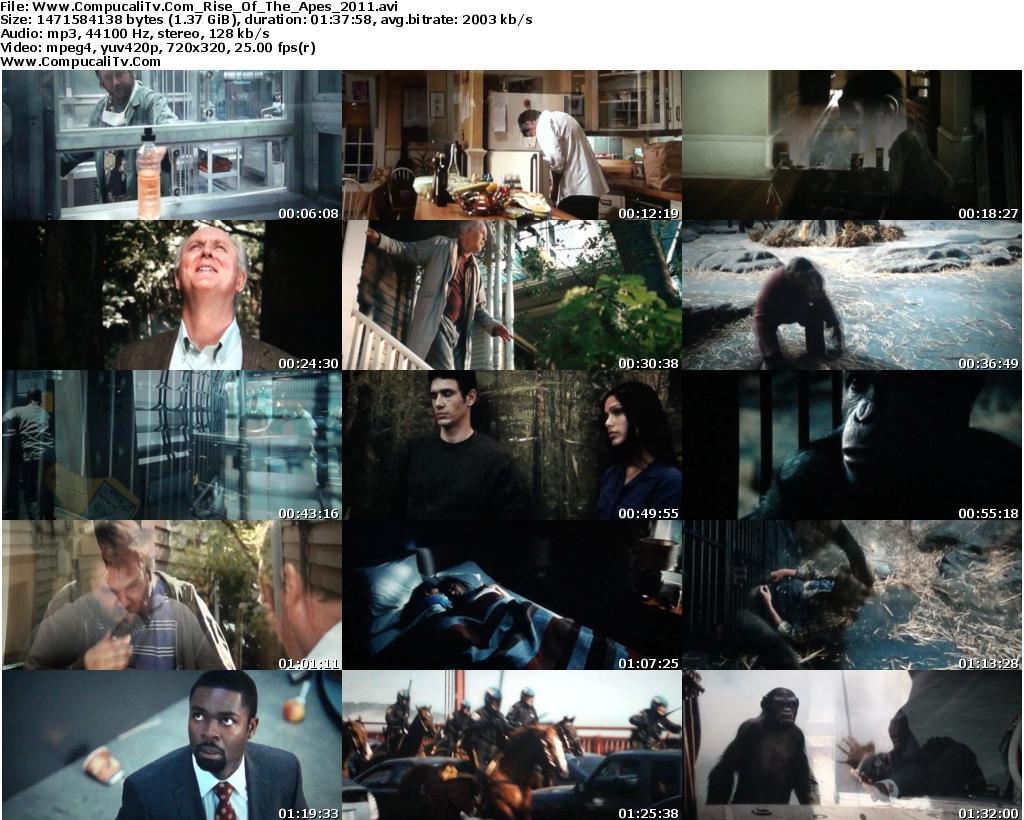 http://3.bp.blogspot.com/-mUUoR6R3G7Q/TkCbAflzASI/AAAAAAAABT4/C07n8oDLRds/s1600/Www.CompucaliTv.Com_Rise_Of_The_Apes_2011_s.jpg