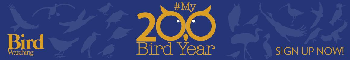 BIRD WATCHING MAGAZINE LAUNCHES 2017 BIRDING CHALLENGE