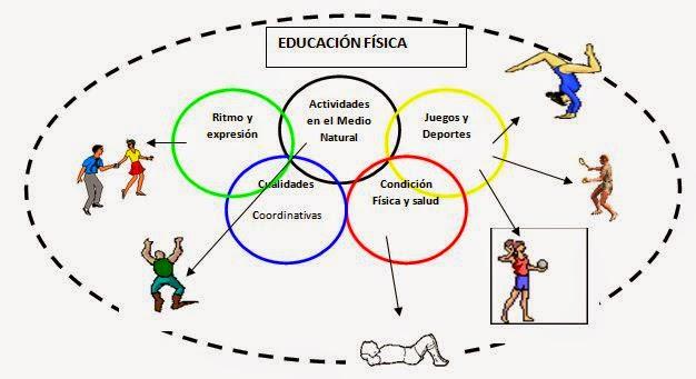 educacion fisica y su importancia: