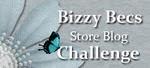 Bizzy Becs Store Challenge - Monthly