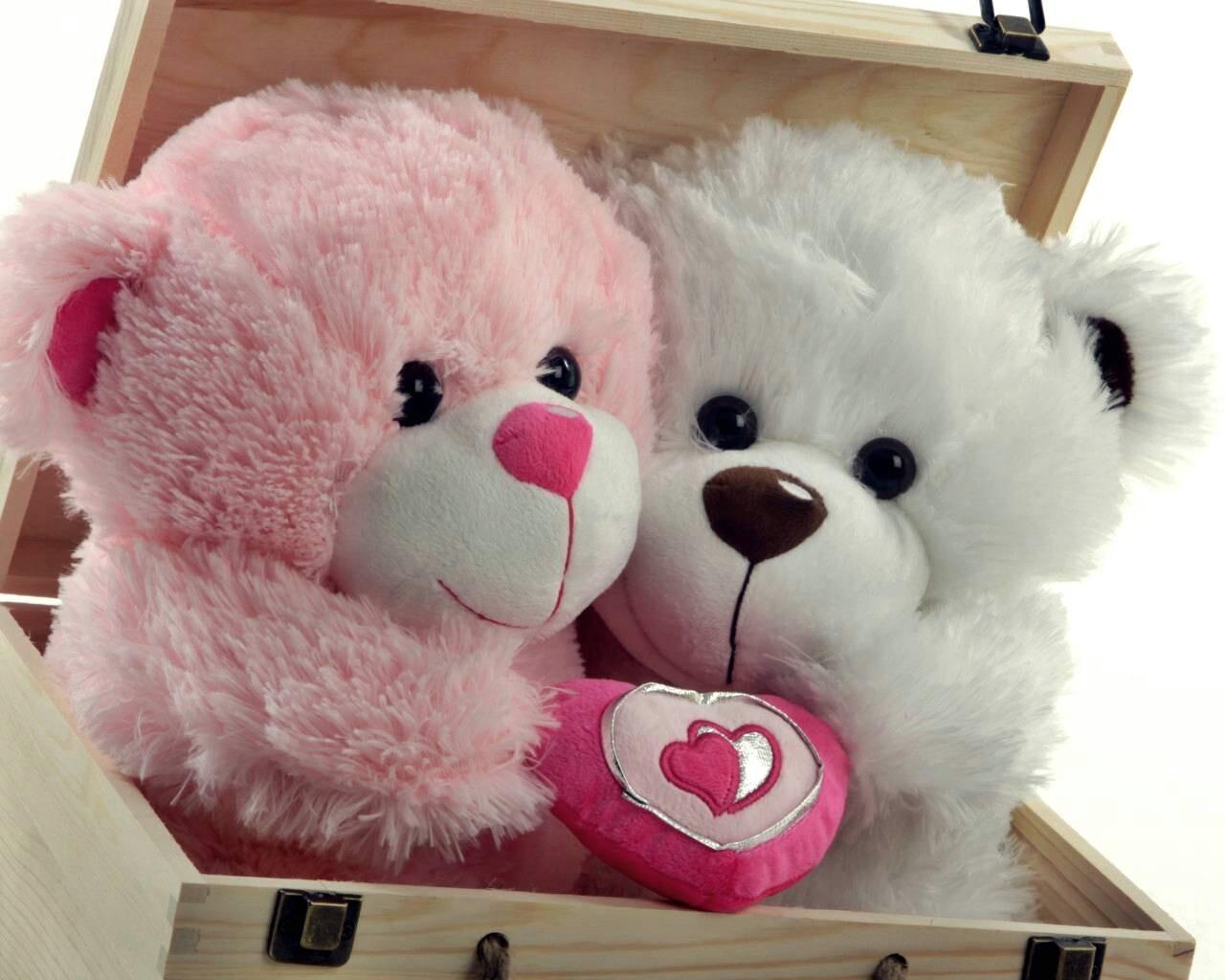 Image result for gấu bông tặng bạn gái
