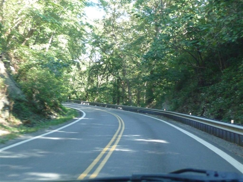 Skid and sandy on the road williamsburg virginia to for Pb motors rochester ny
