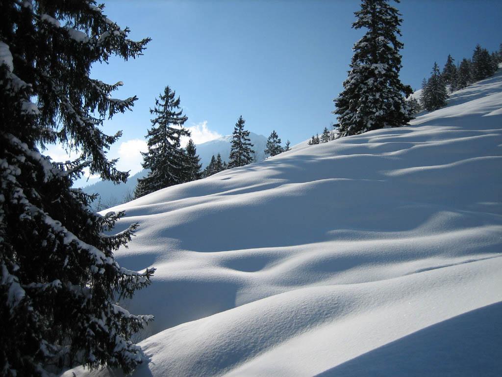 http://3.bp.blogspot.com/-mVSWKL5BL6c/Toa_rFj9M_I/AAAAAAAAAK0/PpOMSP-v9JI/s1600/wallpaper_snow+1.jpg