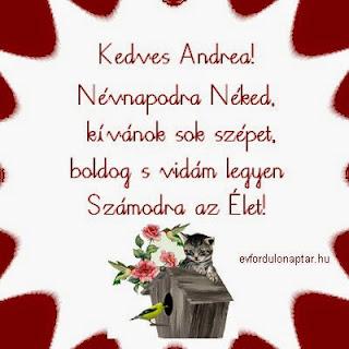 Andrea, Ilma névnap