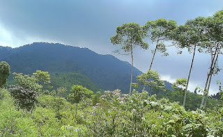 Wisata Gunung Muncung Kabupaten Lingga Dabo Singkep Kepri 2