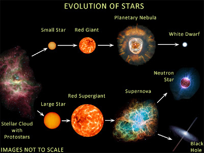 life cycle of stars essay Free essay: life cycle of a star stars are formed in nebulae, interstellar  clouds of dust and gas (mostly hydrogen) these stellar nurseries are abundant  in.