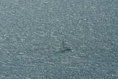 Perderse Por el Mar A Una Simple Velada