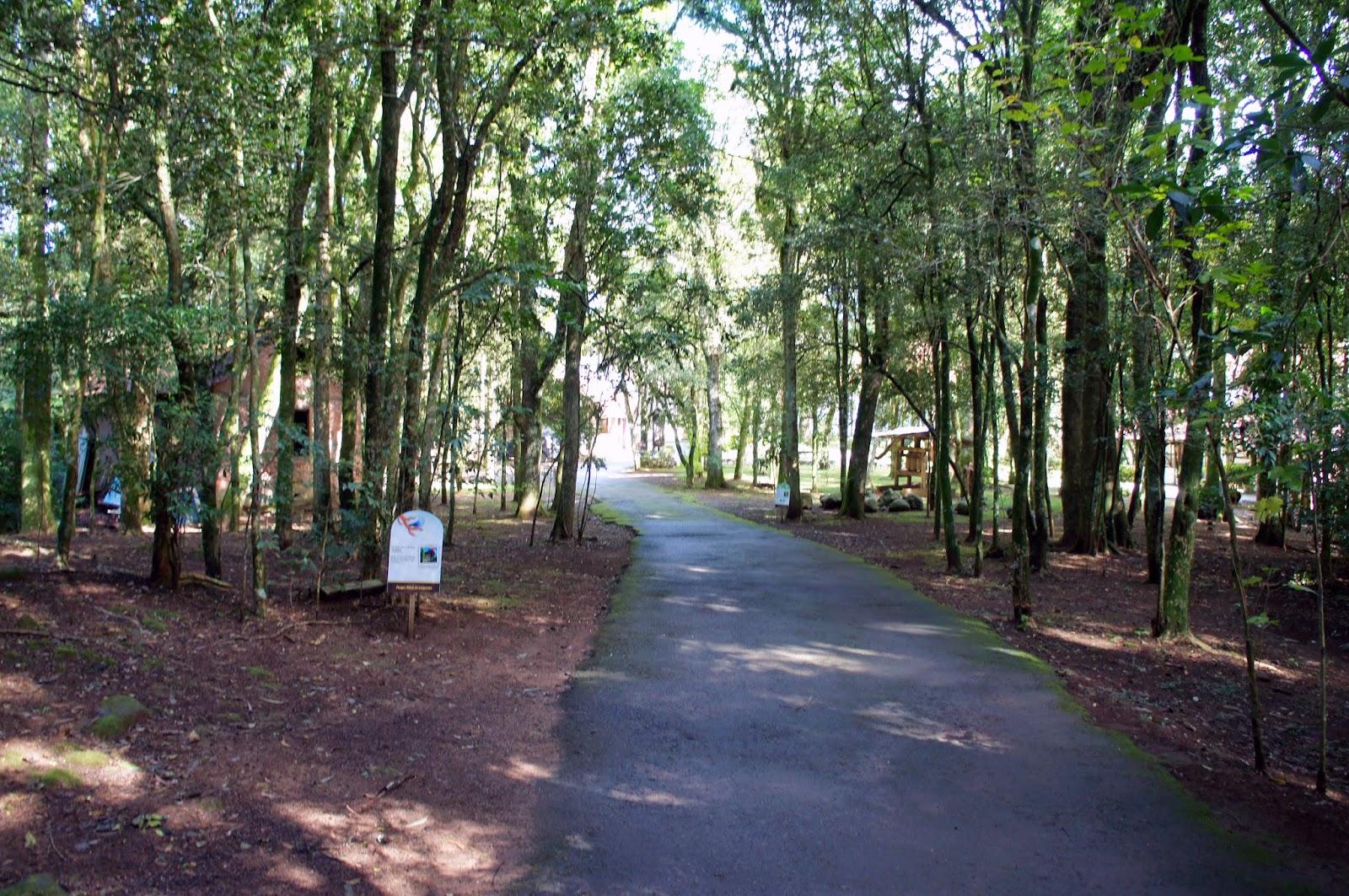 Parque Aldeia do Imigrante em Nova Petrópolis: um pouco de história e cultura sobre a imigração alemã no Brasil