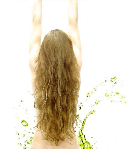 Ler revistas de produtos de cuidado do cabelo