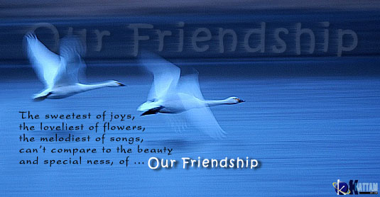 friendship quotes image by