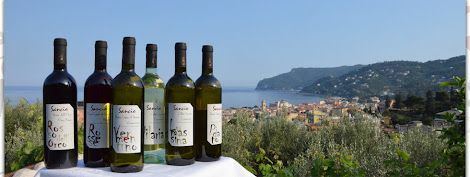 Liguria di Ponente....i vini, il territorio, la storia