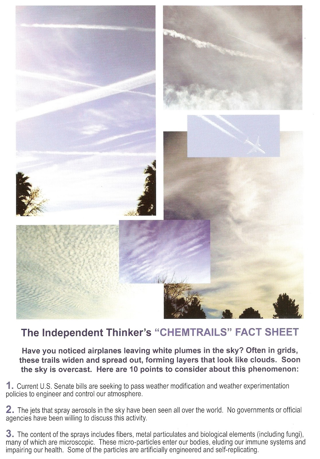 essays on chemtrails