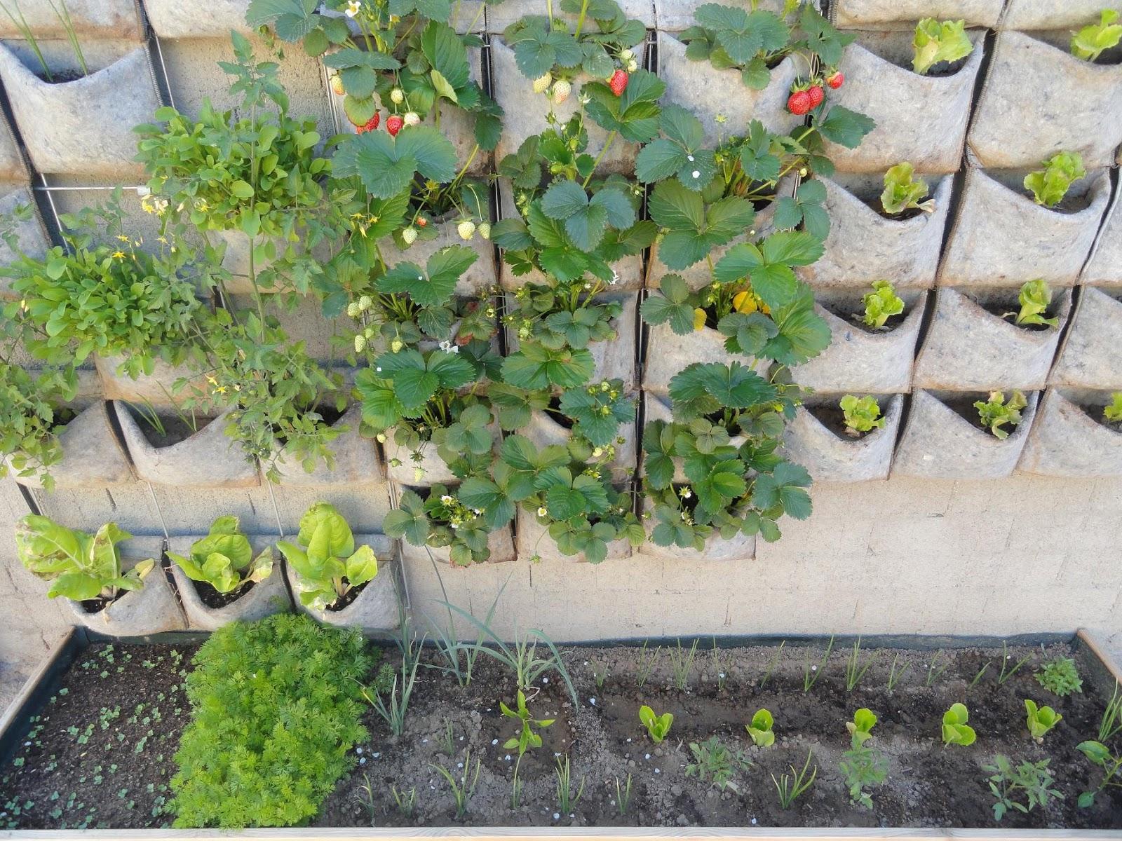 Huerta y jard n producir frutas verduras o plantas arom ticas en casa es posible con los - Huerto en casa ikea ...