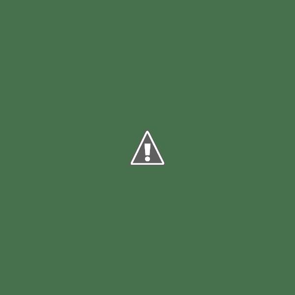 Lechon Sandwich from La Lucha / Sweet Potato Chips