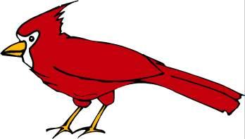 Clipart Burung