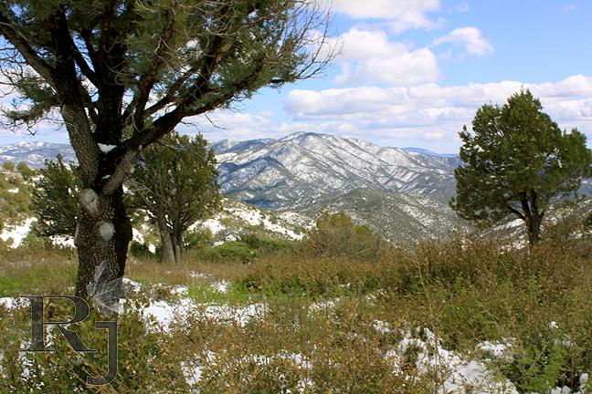 Russell Johnson Fine Art Aspen Creek Trail Winter 39 S
