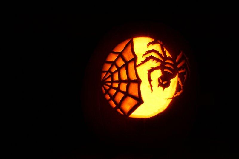 Pumpkin carving pumpkins pinterest spider