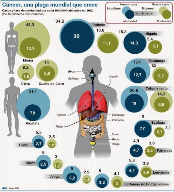 http://www.bbc.co.uk/mundo/ultimas_noticias/2014/02/140203_ultnot_informe_oms_sobre_cancer_bd.shtml