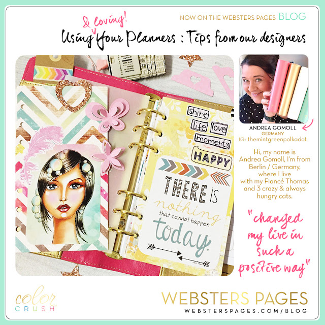 Color Crush planners de webster's pages