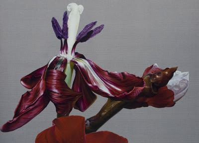 Red Tulip; the day of death, 2012 by Anne Middleton