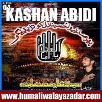 http://ishqehaider.blogspot.com/2013/11/kashan-abidi-nohay-2014.html