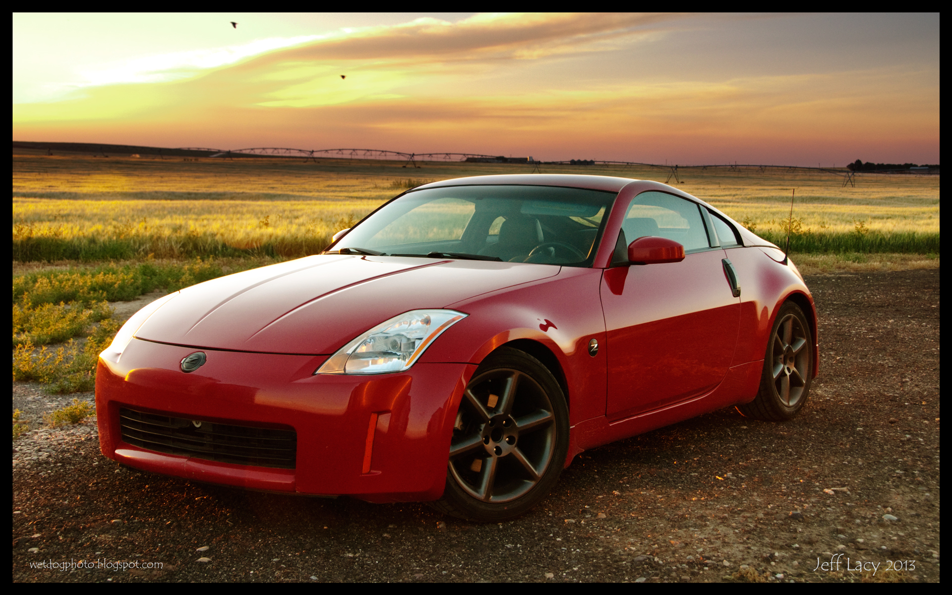 wet dog photo dippy z no 2 nissan 350z wallpaper. Black Bedroom Furniture Sets. Home Design Ideas