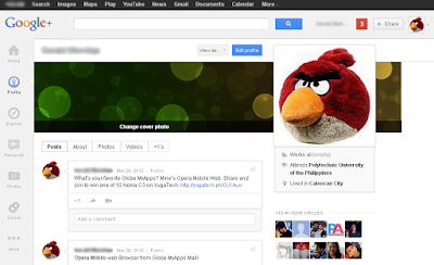 Google Plus Profile Website
