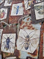 med fjärilar och insekter...