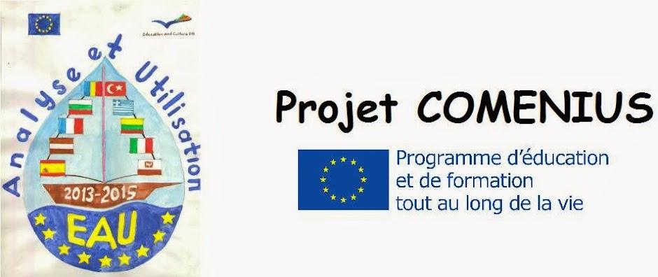 EAU - Eau, Analyse et Utilisation (projet COMENIUS)