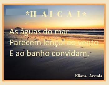 HAICAI - ELIANE ARRUDA